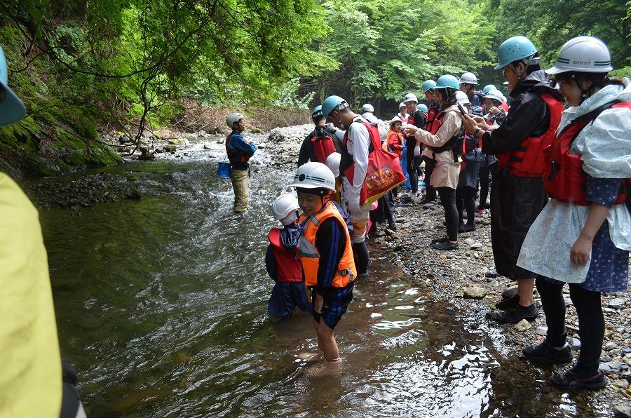 「渓流登り / 川遊び」