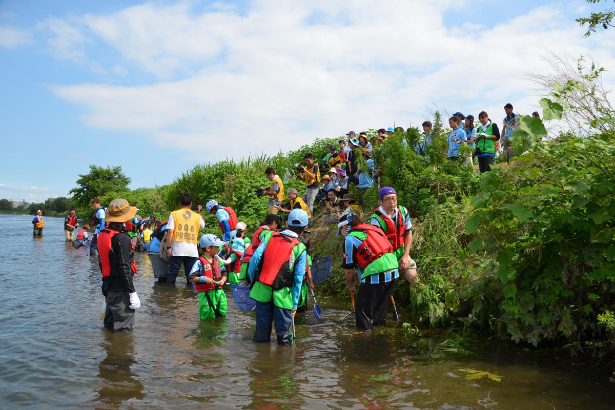 多摩川エコラシコ
