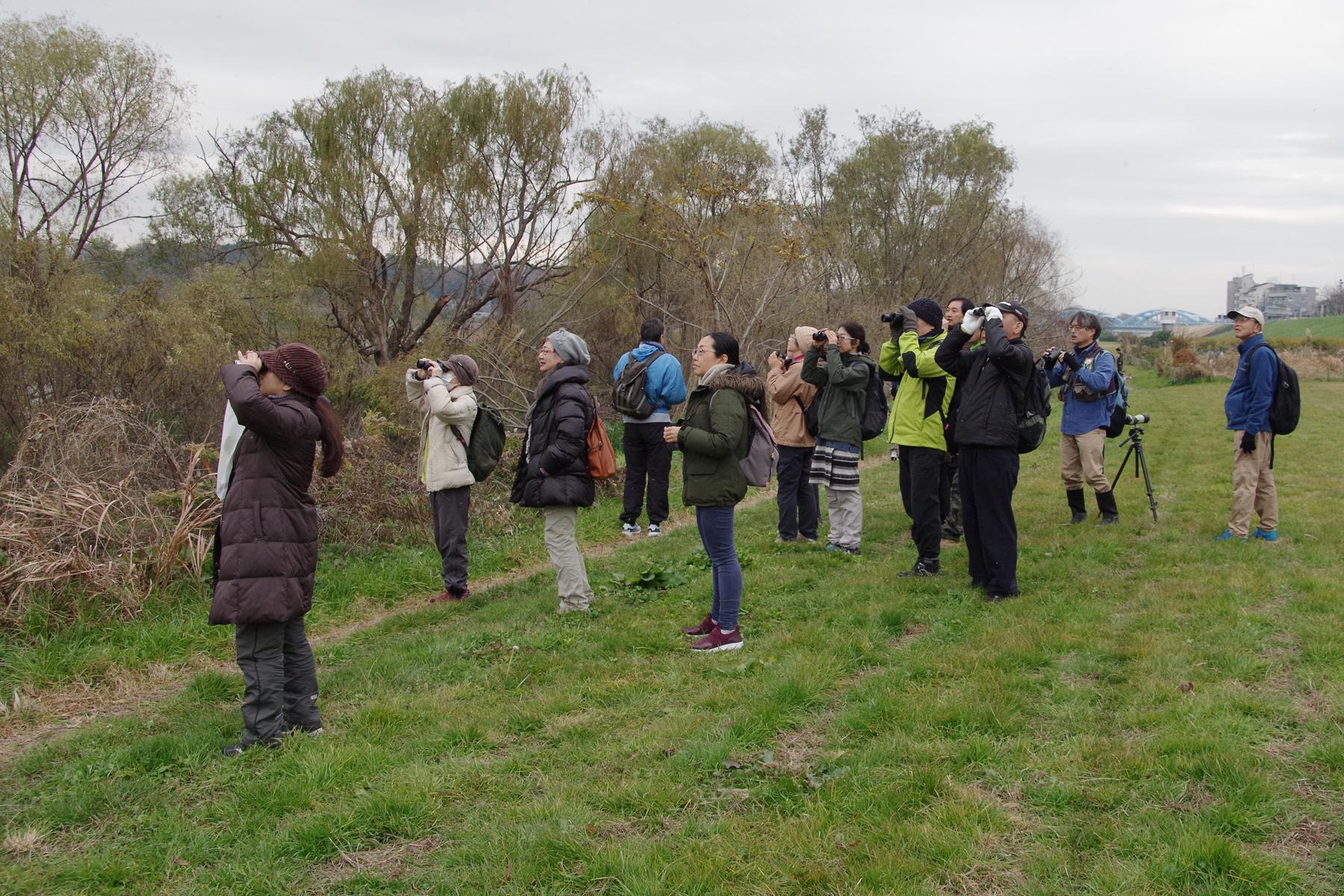 野鳥観察会